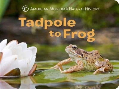 Tadpole to Frog (BD)