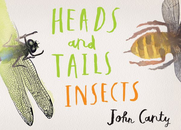Heads and Tails: Insects (HC)